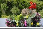 Arbeiten von Einhorn Gartenservice